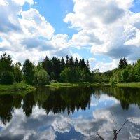 Летний день на озере :: Мария Минченко