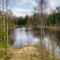 Весна на Смоленщине :: Павел Кочетов