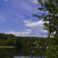 у озера :: Евгений