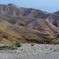 Иудейская пустыня... :: Надя Кушнир