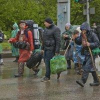 ВКХ 2017 глазами паломника (серия). :: Андрей Синицын