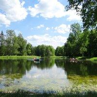 Чудный летний день! :: Алексей Цветков