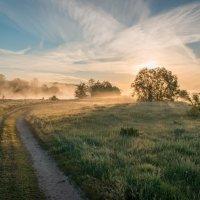 Туманное утро :: Алексей Яковлев