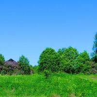 Жила была деревня... :: ВАЛЕНТИНА ИВАНОВА