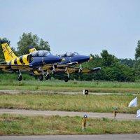 Kuban AirShow Балтийские Пчёлы :: Алексей С.
