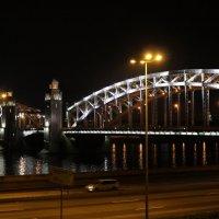 Мост Петра Великого (Большеохтинский) :: Ольга