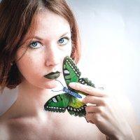 Бабочка :: Александра П