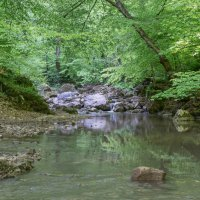 май на реке Руфабго Адыгея :: Михаил