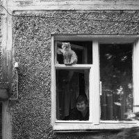 Человек и кошка :: Алексей Мартынов