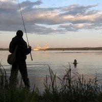 Рыбалка у САЭС :: Александр Гапеев