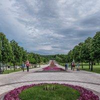Аллея :: Игорь Капуста