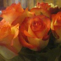 Праздничные розы :: татьяна