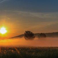 Утро туманное. :: Ирина ...............