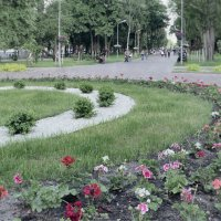 Цветочная аллея. :: Андрий Майковский