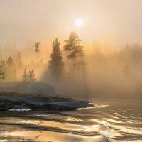 Туманный бархат солнца :: Фёдор. Лашков