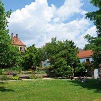 Любимый дворик...жаркий июнь... :: Galina Dzubina