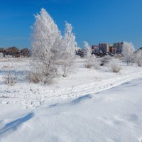 Зимний пейзаж :: Анатолий Иргл