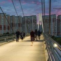 Пешеходный мост через Москва-реку в Мякинино. :: Владимир Безбородов