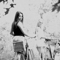 Чтобы хорошо жить, надо уметь держать равновесие. Как при катании на велосипеде. :: Ирина Крохмаль