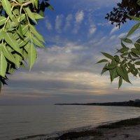 Закат на Азовском море :: оксана косатенко