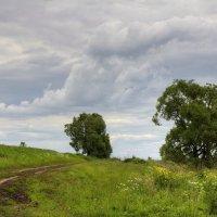 Летний пейзаж :: Константин