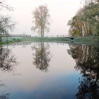 Осень. Туман. :: Нина Бурченкова.