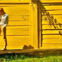 жёлтый забор :: Дмитрий Потапов