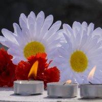 22 июня - День памяти и скорби :: Вячеслав