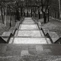 Ступени Мариинского парка. :: Андрий Майковский