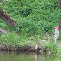 На рыбалке :: Наталья Нарсеева