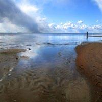 Финский залив. :: LIDIA PV
