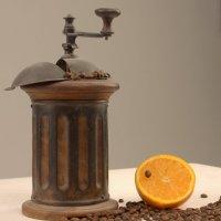 orange taste :: Олег Ионичев