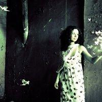 На огонь слетались.. :: Талия Леднева