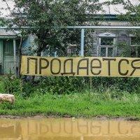 For sale :: Андрей Холмов