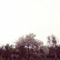 ... :: Fall horizon