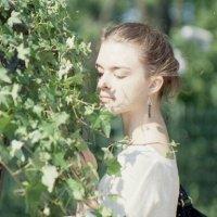 Весенняя пленка :: Анна Сидорова
