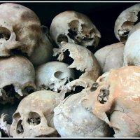 Жертвы режима Пол Пота :: Евгений Печенин