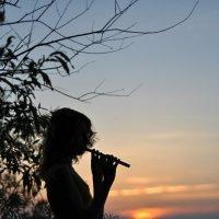 Вечерняя мелодия :: Денис Нечаев