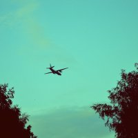самолет :: Екатерина Данилова