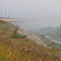 А я еду, а я еду за туманом... :: Марина Грушина