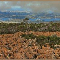Камни горы Веллингтон :: Евгений Печенин
