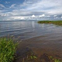 Плещеево озеро. :: Анатолий Веремеев