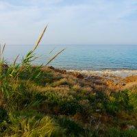 Кипр :: Анастасия Громова