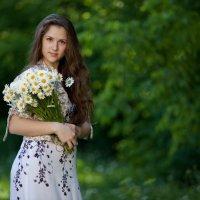 Ромашковое лето :: Мария Новикова