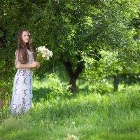 Лето в ромашках :: Мария Новикова