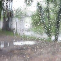 Летний дождь :: Дмитрий Долгов