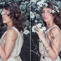 Яблони в цвету :: Евгения Базескина