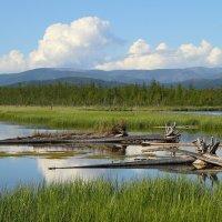 Север Байкала :: Weskym Markova
