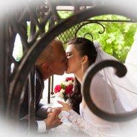 Поцелу :: Александр Малахов