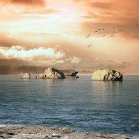 Озеро Кинерет :: Ron Levi